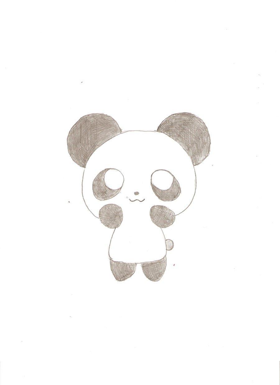 Cute Panda Drawings Tumblr
