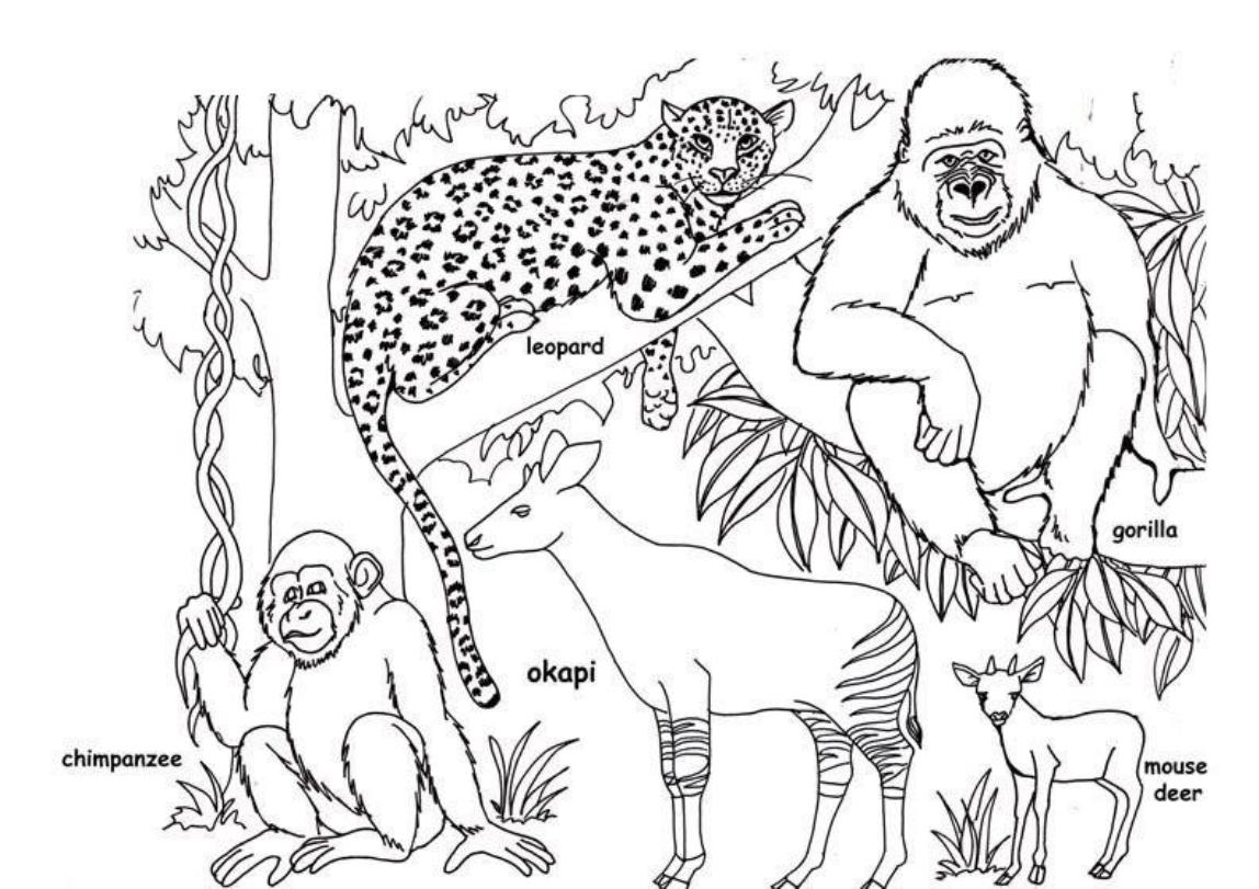 African Coloring Pages For