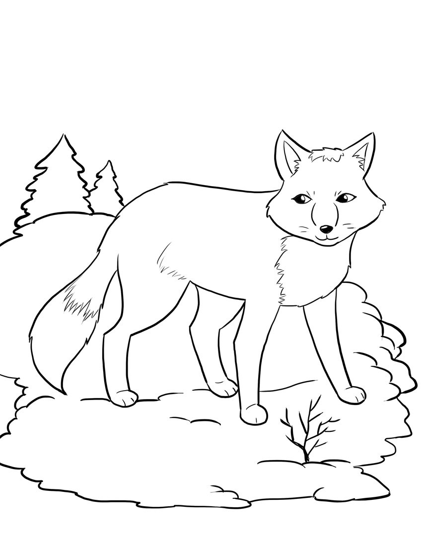 Beautiful Fox Coloring Pages 60 In Coloring Print With Fox