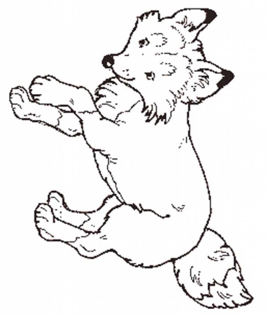 Jan Brett The Mitten Coloring Pages Az Coloring Pages For The