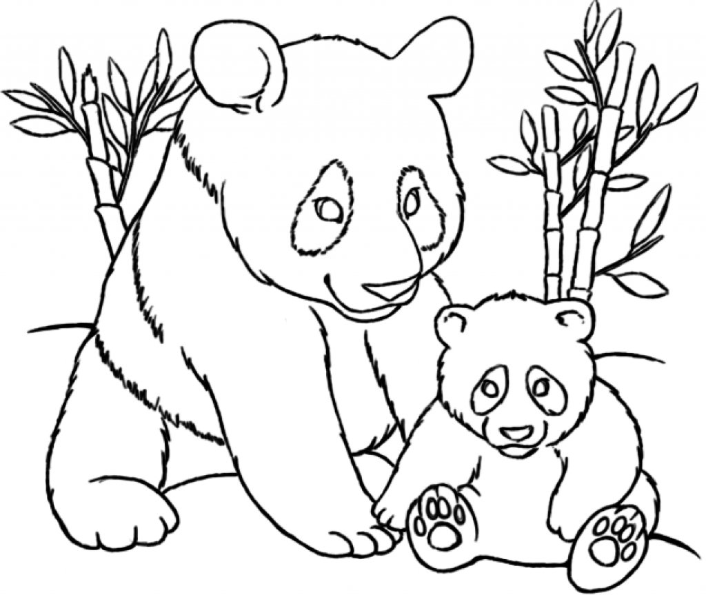 The Elegant Panda Bear Coloring Page Pertaining To Invigorate In