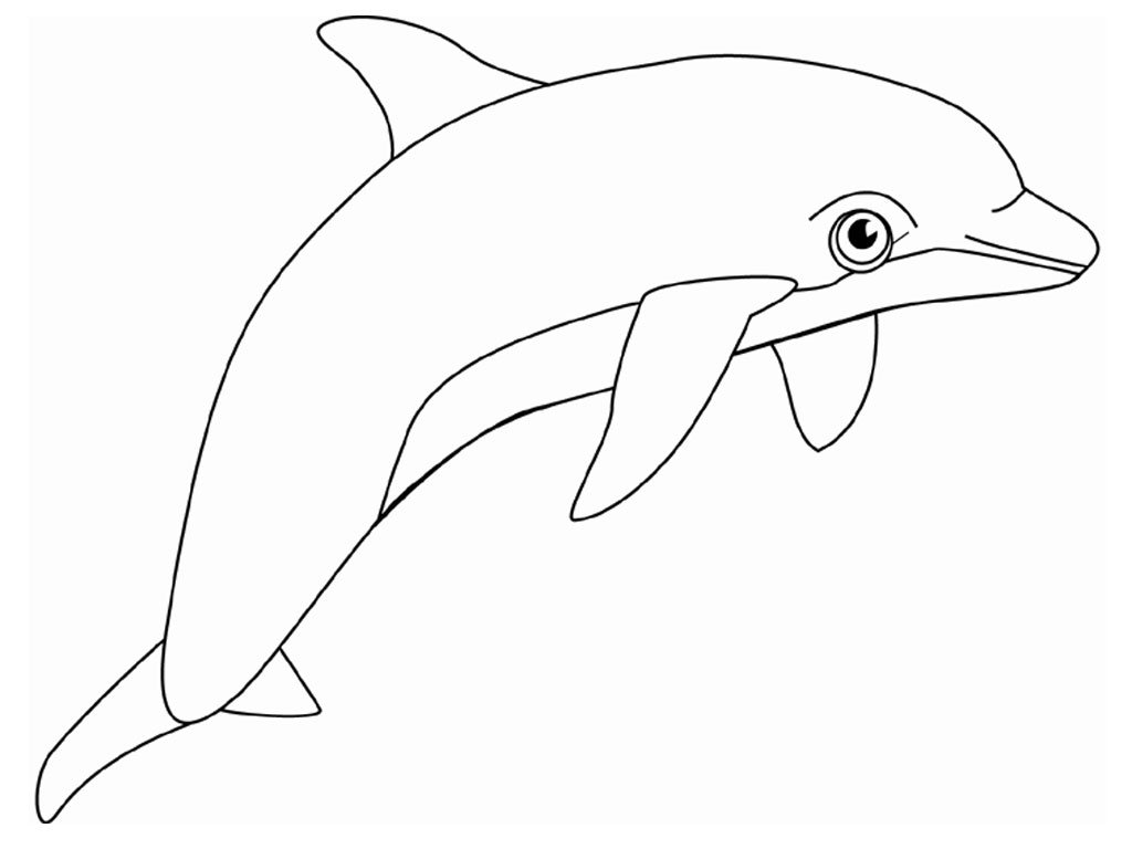 Dolphin Coloring Pages (11)