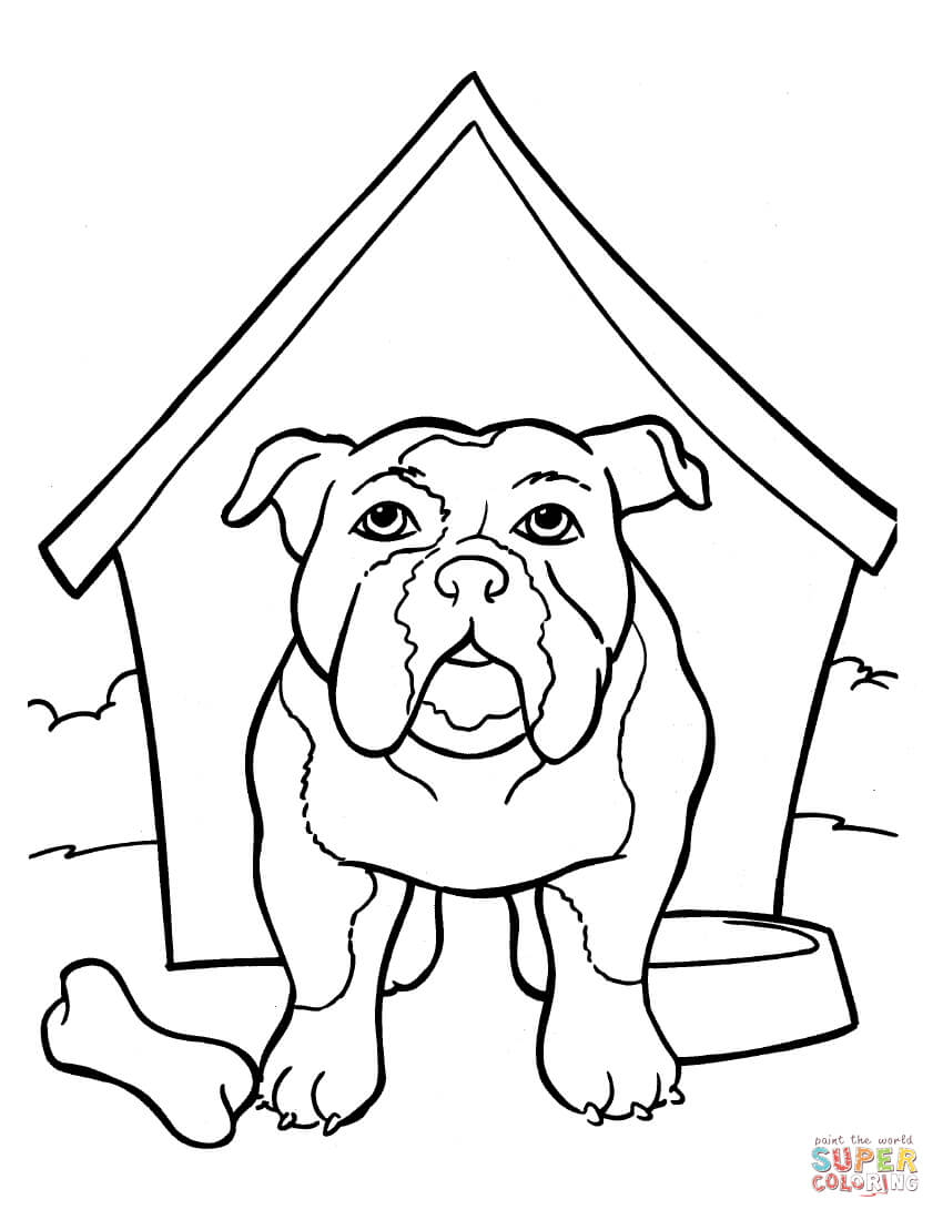Draw French Bulldog Coloring Pages 18 In Line Drawings With French
