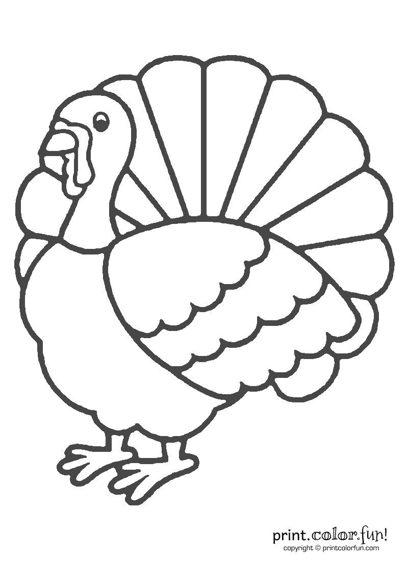 Thanksgiving Turkey Coloring
