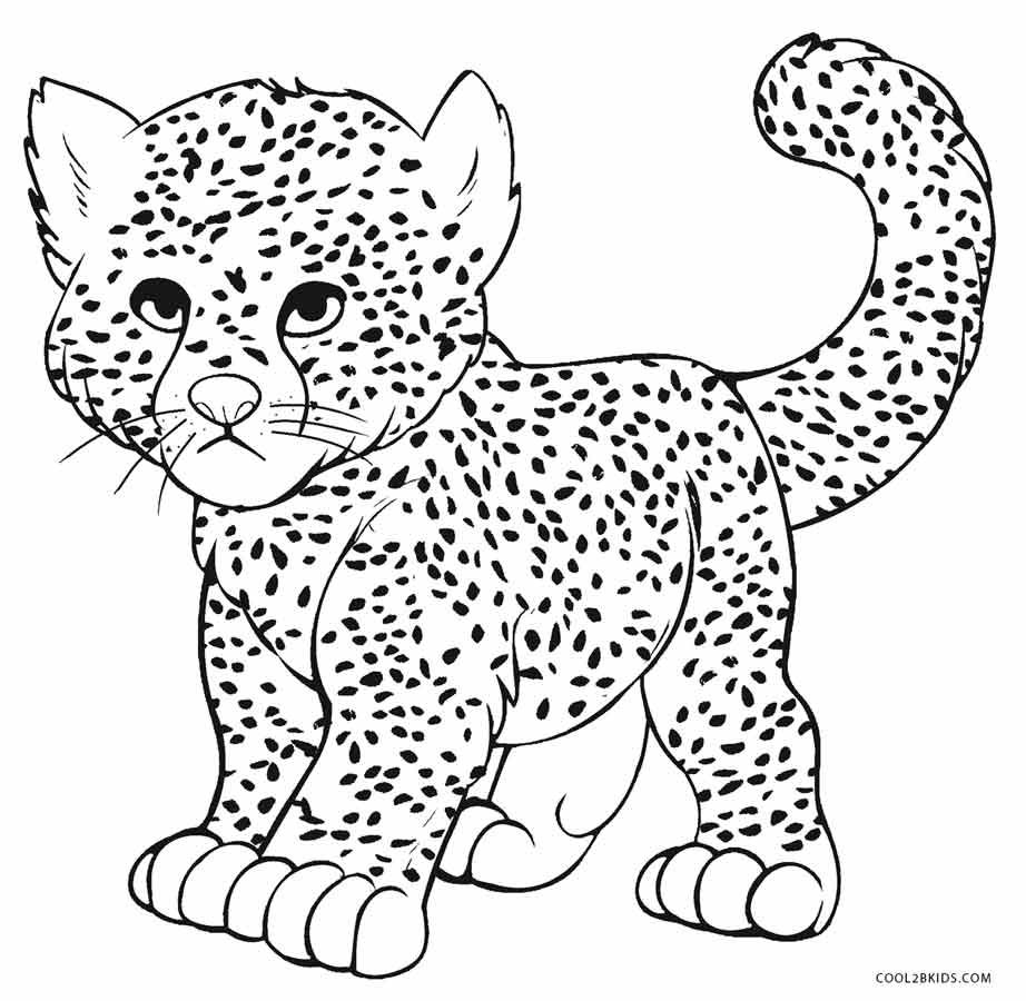 Elegant Cheetah Coloring Pages 34 In Coloring For Kids With