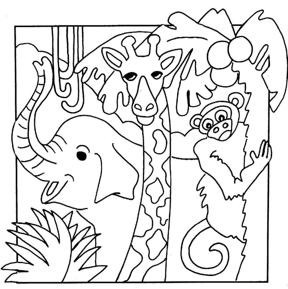Epic Jungle Animal Coloring Pages 59 For Seasonal Colouring Pages