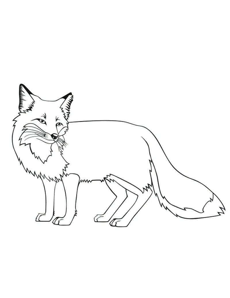 Fancy Fox Coloring Pages 21 About Remodel Free Coloring Book With