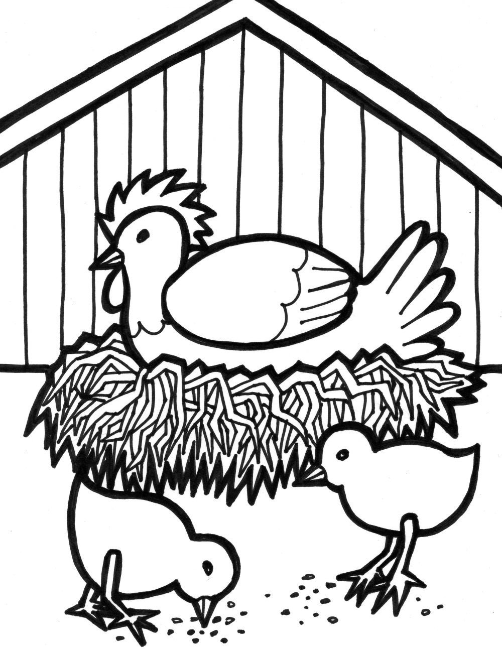 Farm Animal Coloring Pages Hen And Chicks