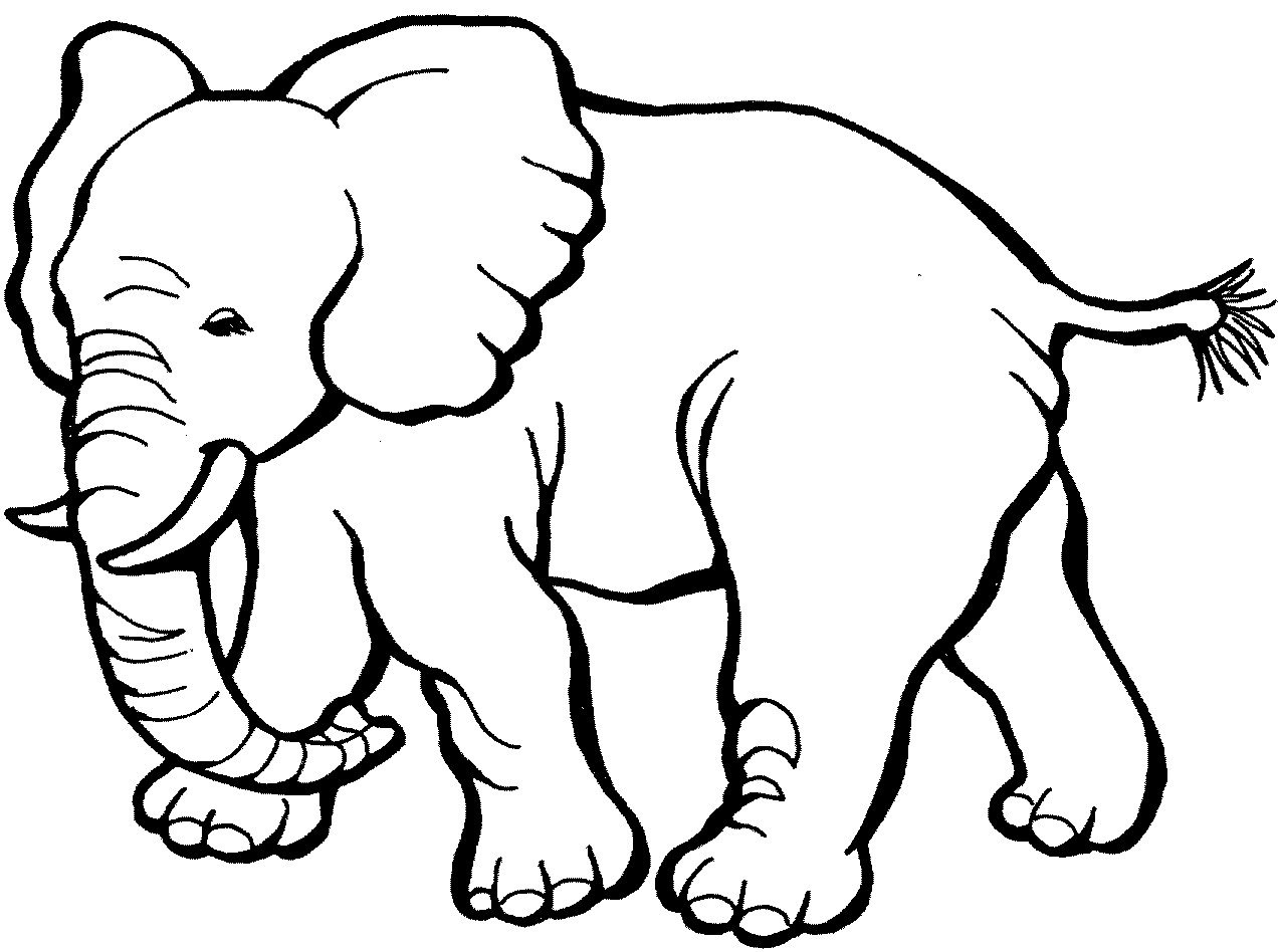 For Kid Animal Coloring Pages Printable 95 For Your Drawing With