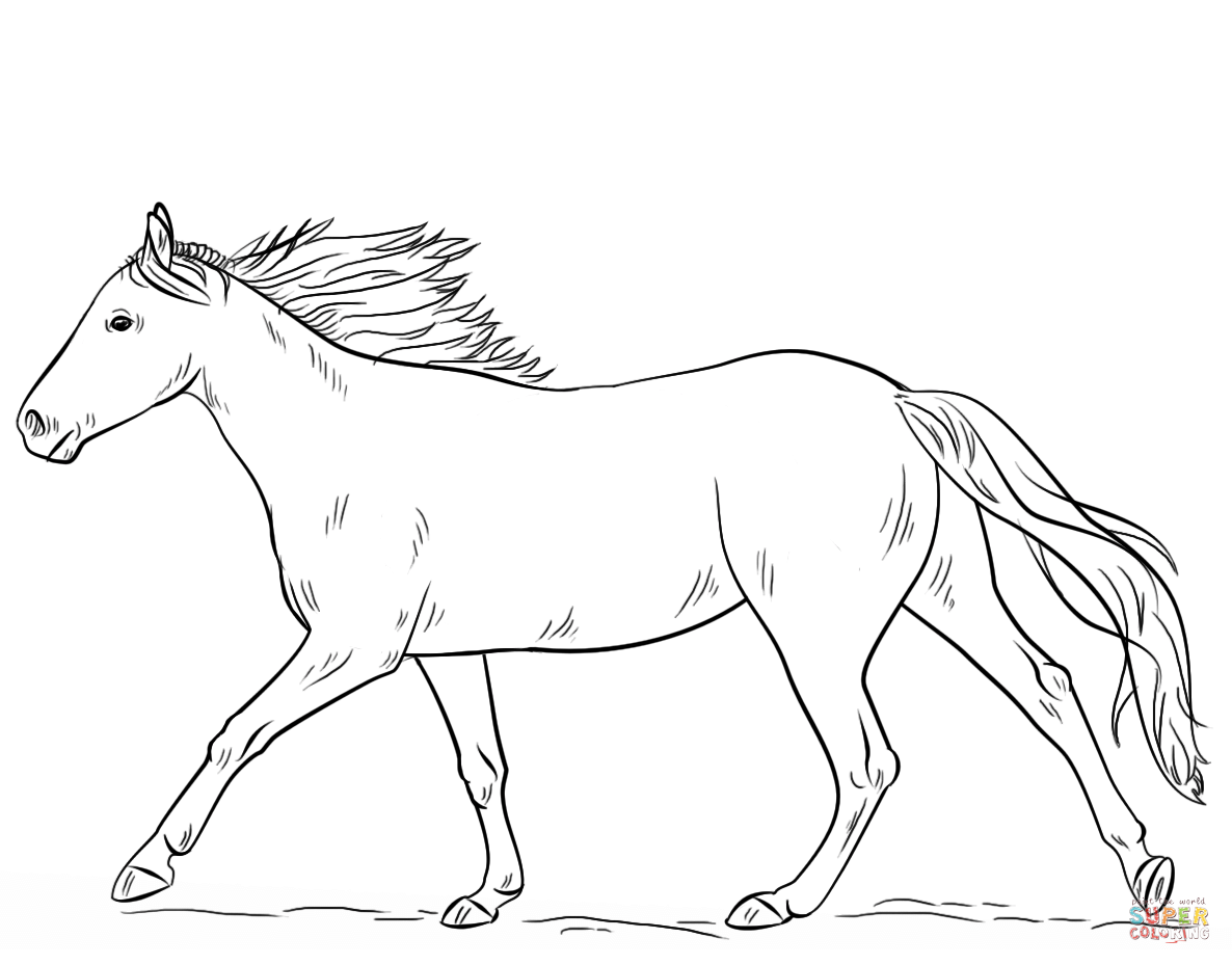 For Kid Horse Coloring Picture 13 For Your To Download With Horse