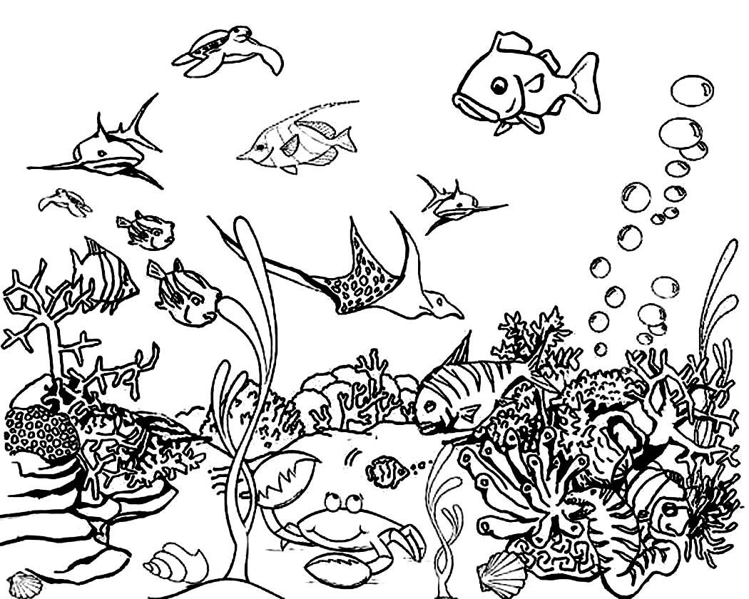 Free Online Ocean Coloring Sheets 15 On Pictures With Ocean
