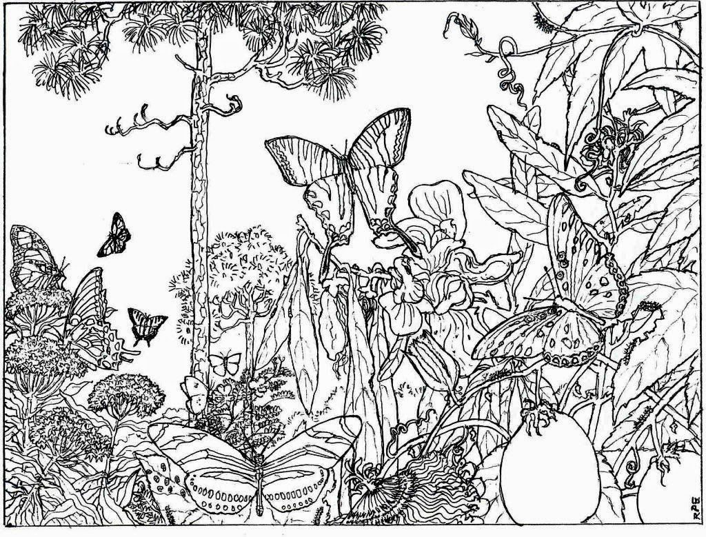 Good Nature Coloring Pages 15 For Your Coloring Books With Nature