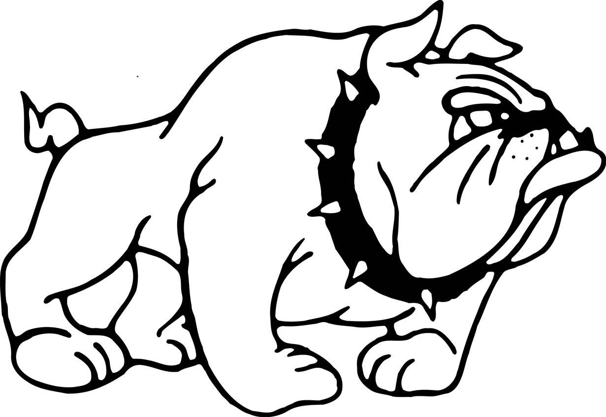 Great Bulldog Coloring Pages 15 With Additional Free Colouring
