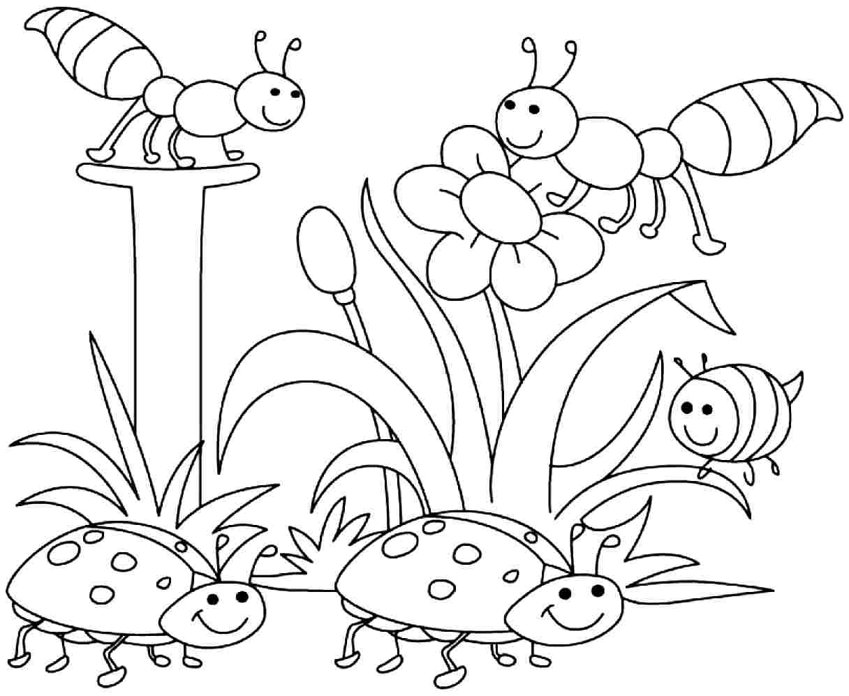 Spring Coloring Pages Free To Download And Best Of Printable