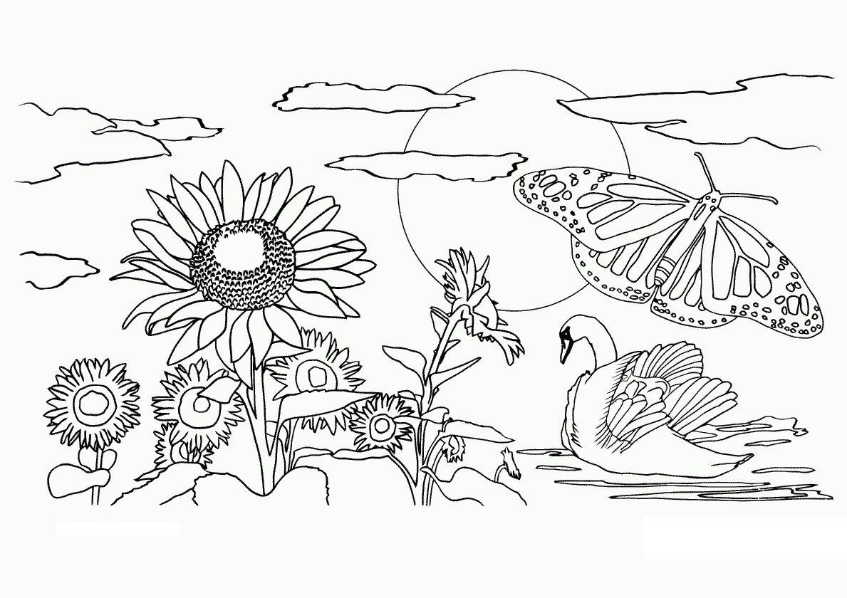 To Print Nature Coloring Page 28 For Sheets With Nature Coloring