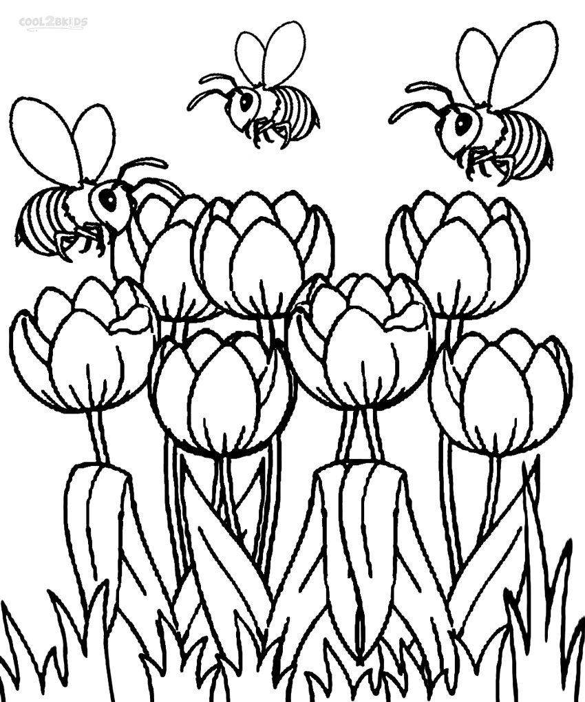 Trend Tulip Coloring Pages 11 With Additional Download Coloring