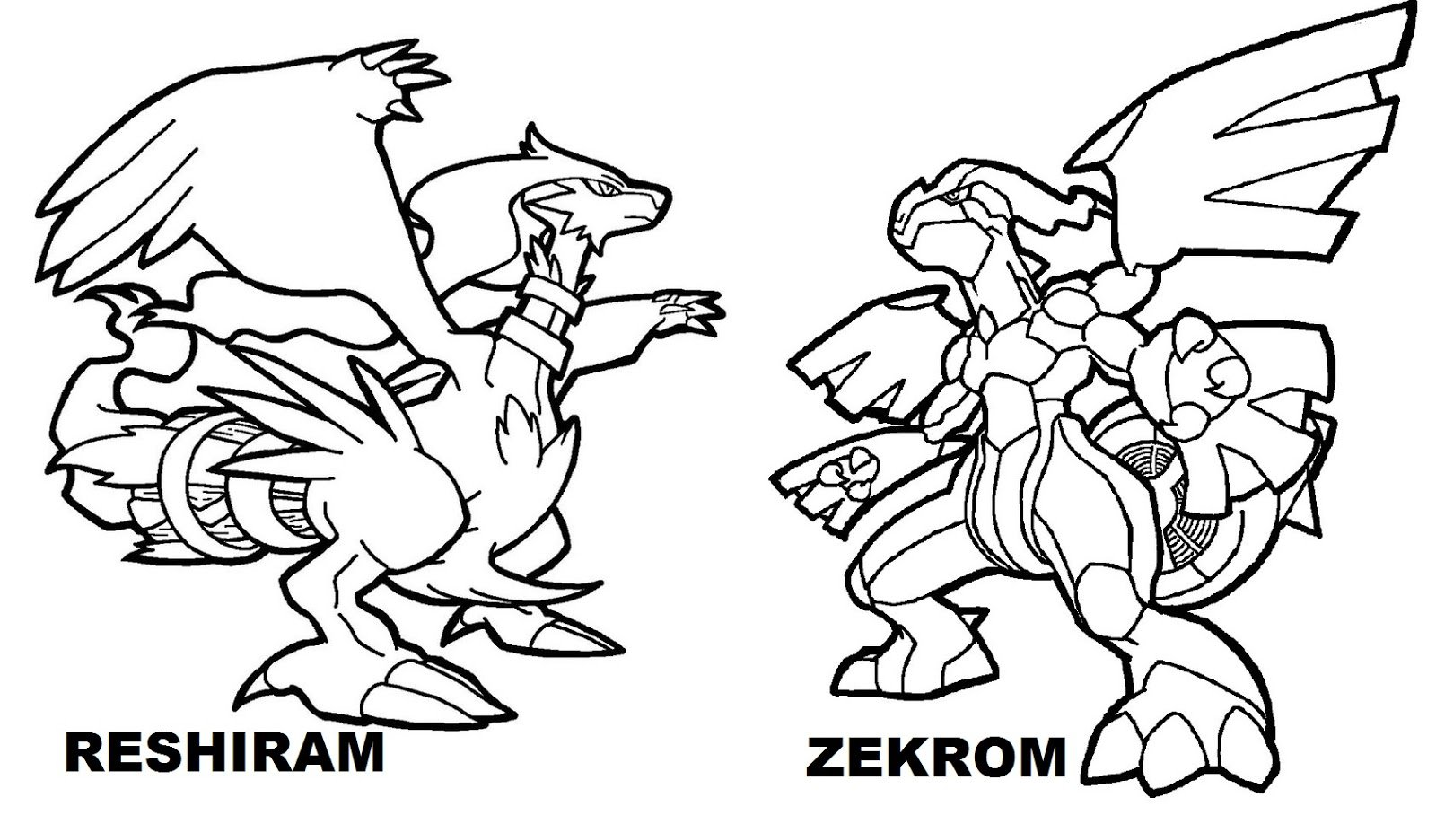 Winsome Inspiration Pokemon Coloring Pages Entei Zekrom Vs