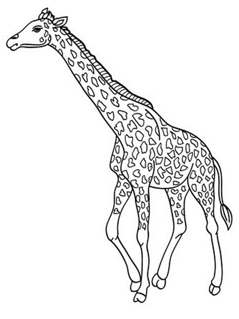 Giraffe Coloring Pages - NEO Coloring