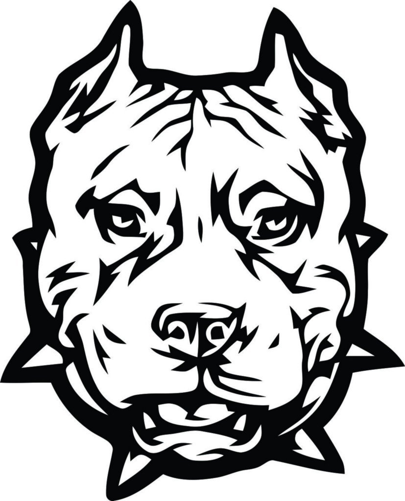 Amazing Pitbull Coloring Pages 45 In Coloring Pages Online With