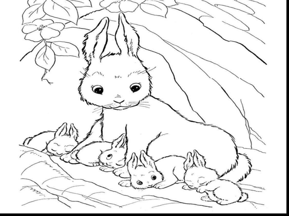 Astounding Cute Baby Bunny Coloring Pages With Rabbit Coloring