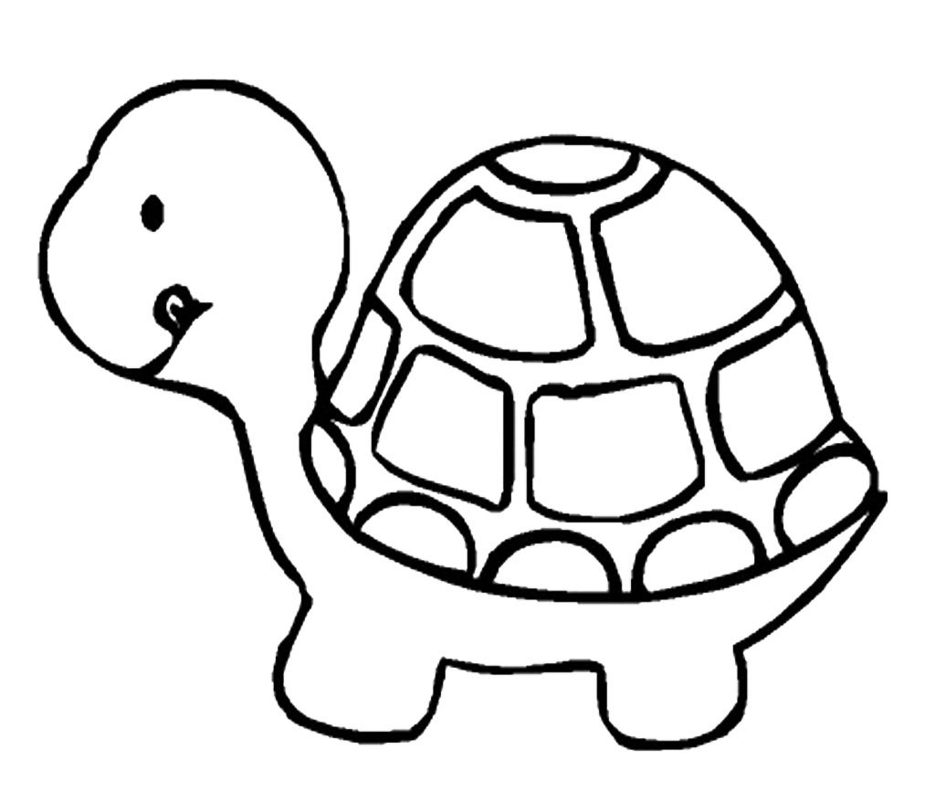 Beautiful Turtle Coloring Page 24 On Free Colouring Pages With