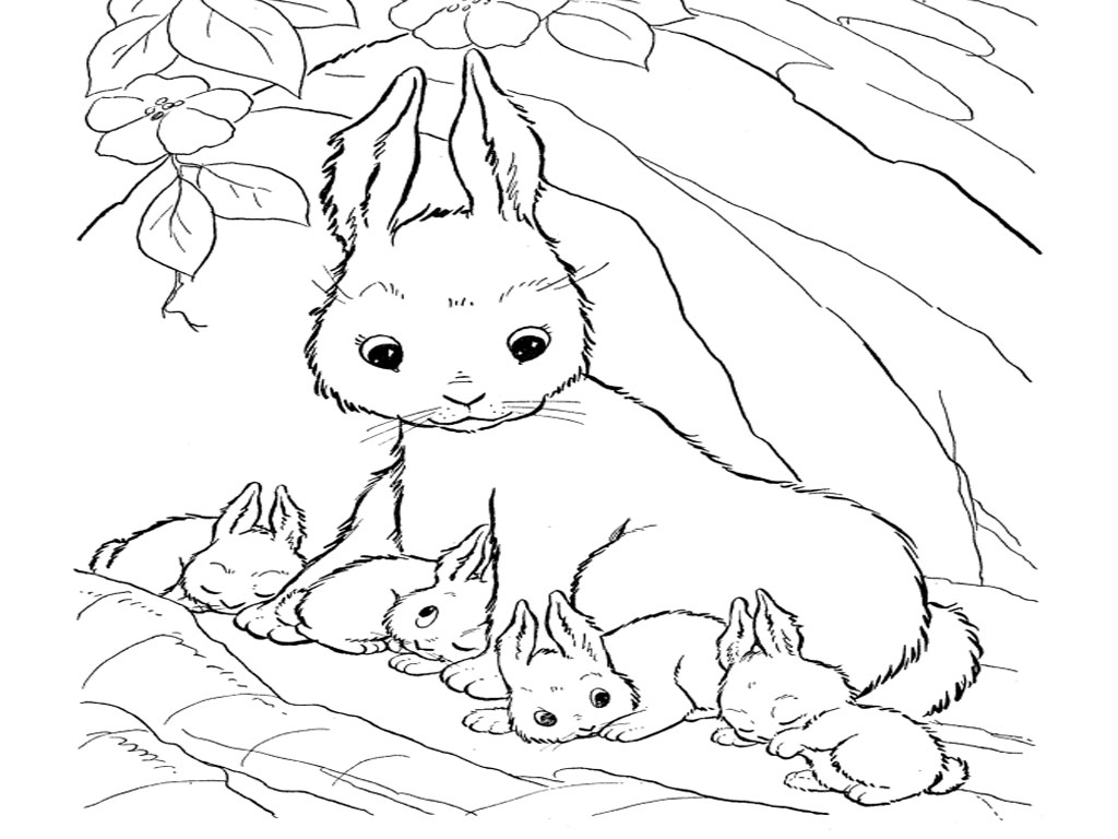 Baby Bugs Bunny Coloring Pages Wecoloringpage Cartoons Pictures