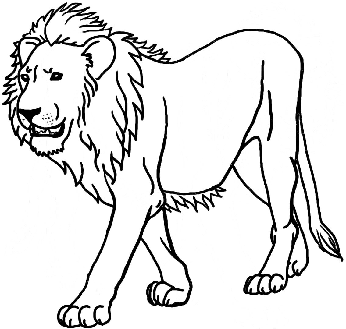 Drawing Coloring Page Of A Lion 98 In For Kids With Coloring Page