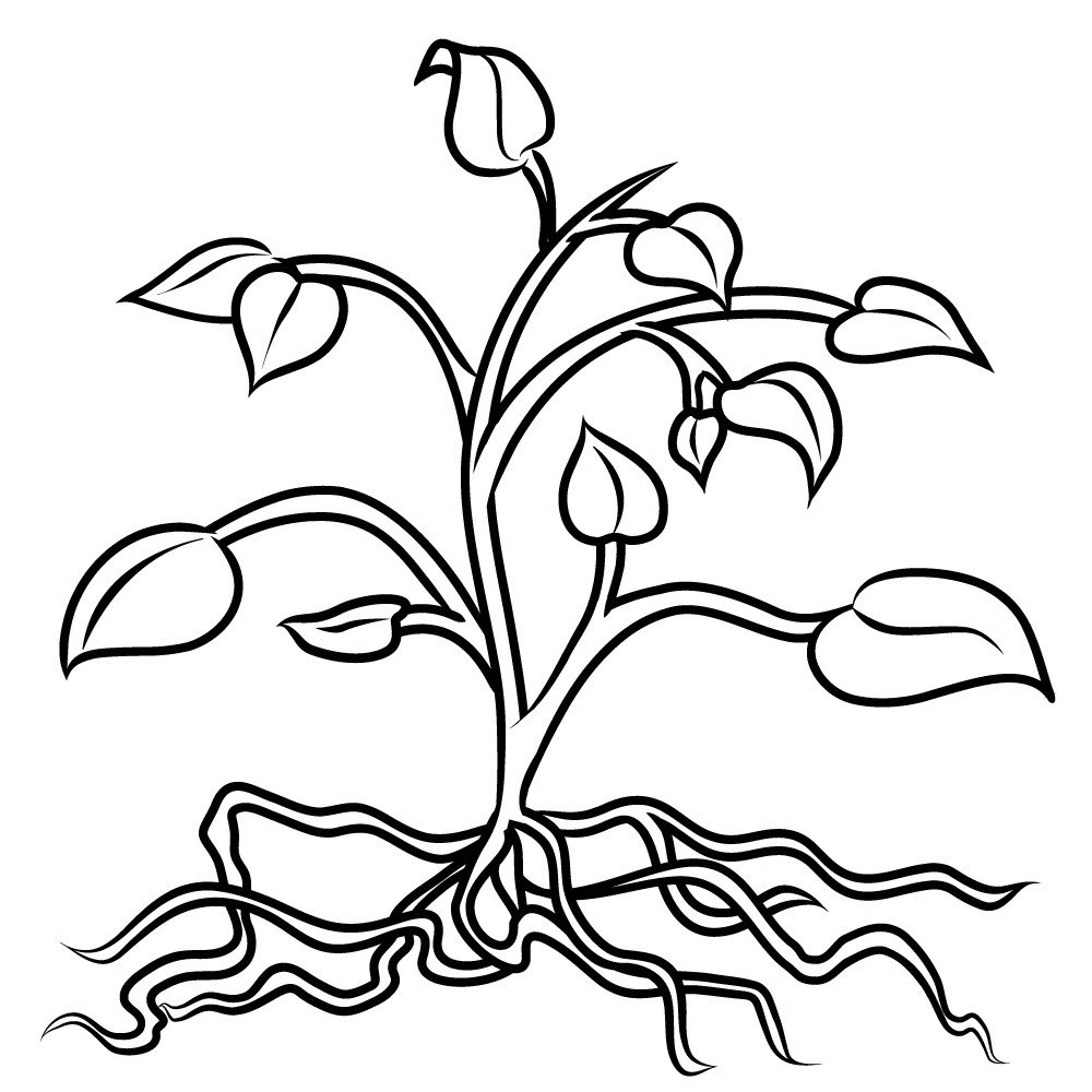 For Kid Coloring Pages Plants 84 About Remodel Free Coloring Pages