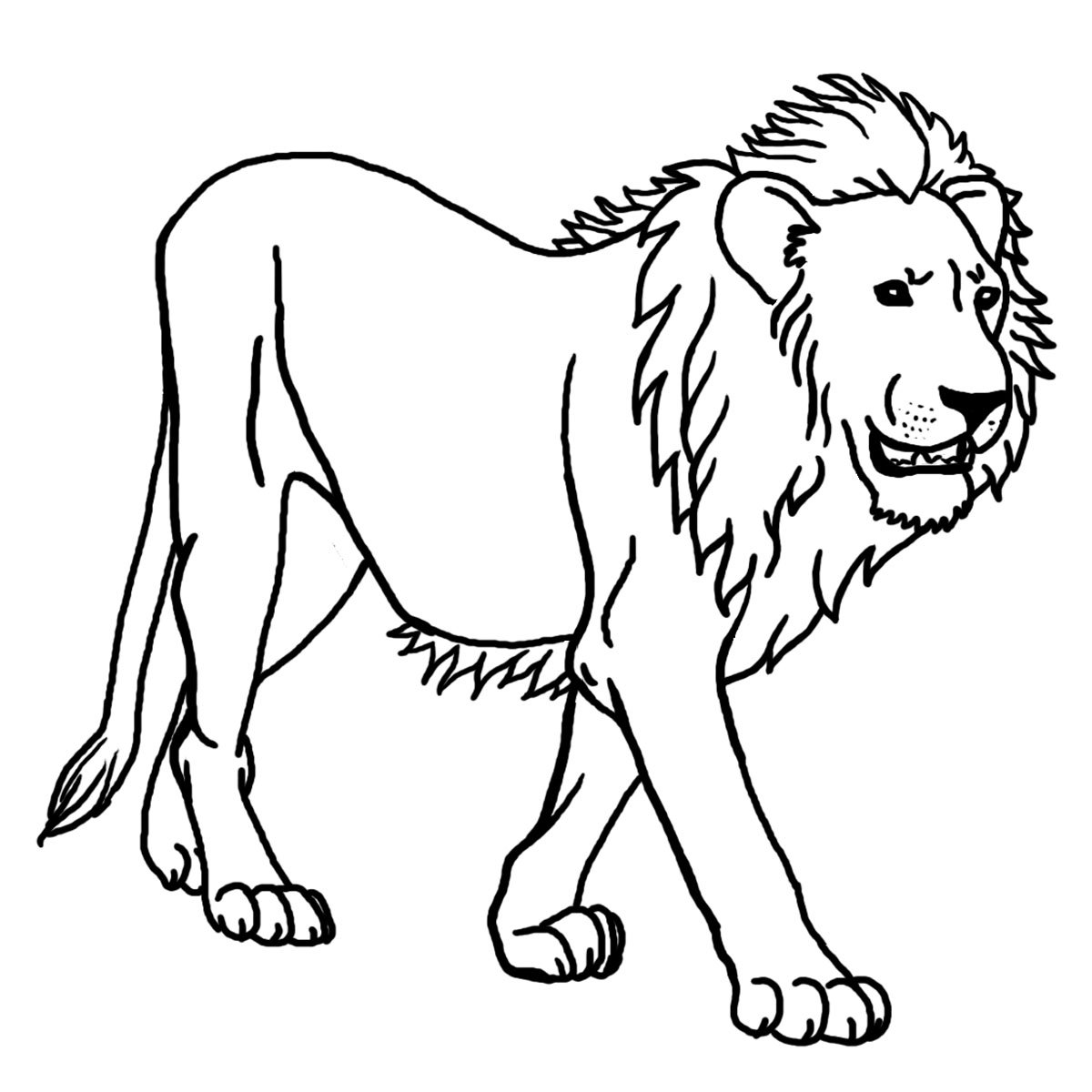 Free Printable Lion Coloring Pages For Kids New