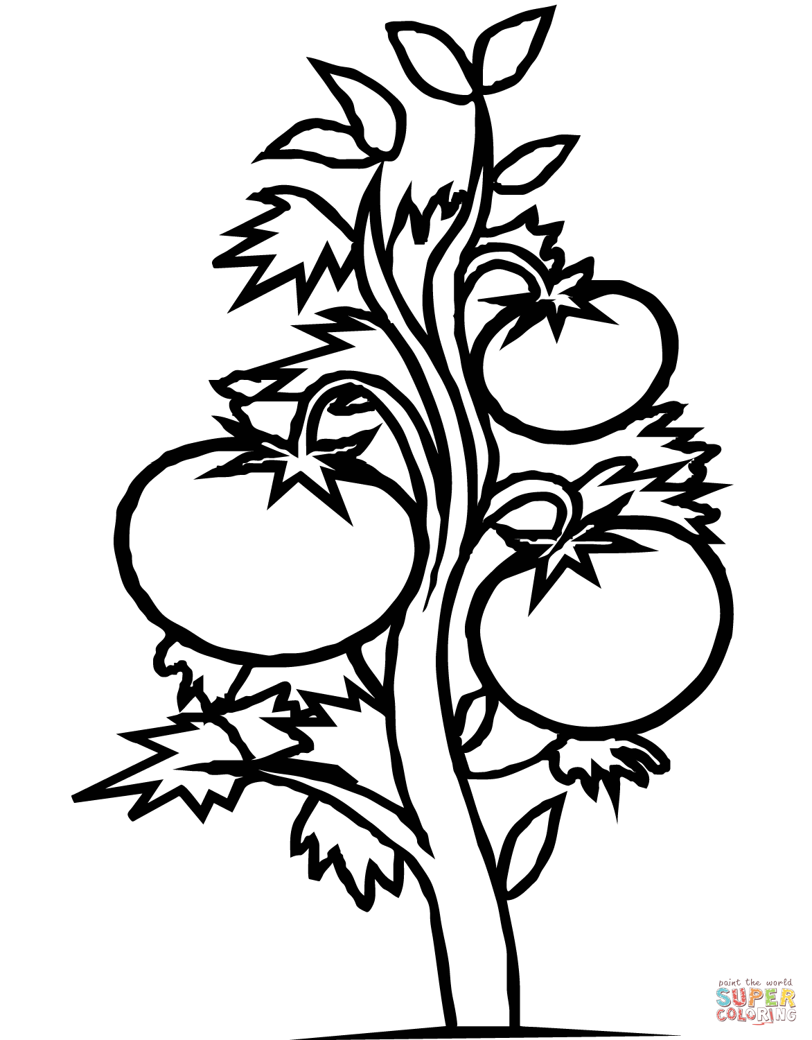 Free Printable Plant Coloring Pages 22 For For Kids With Plant