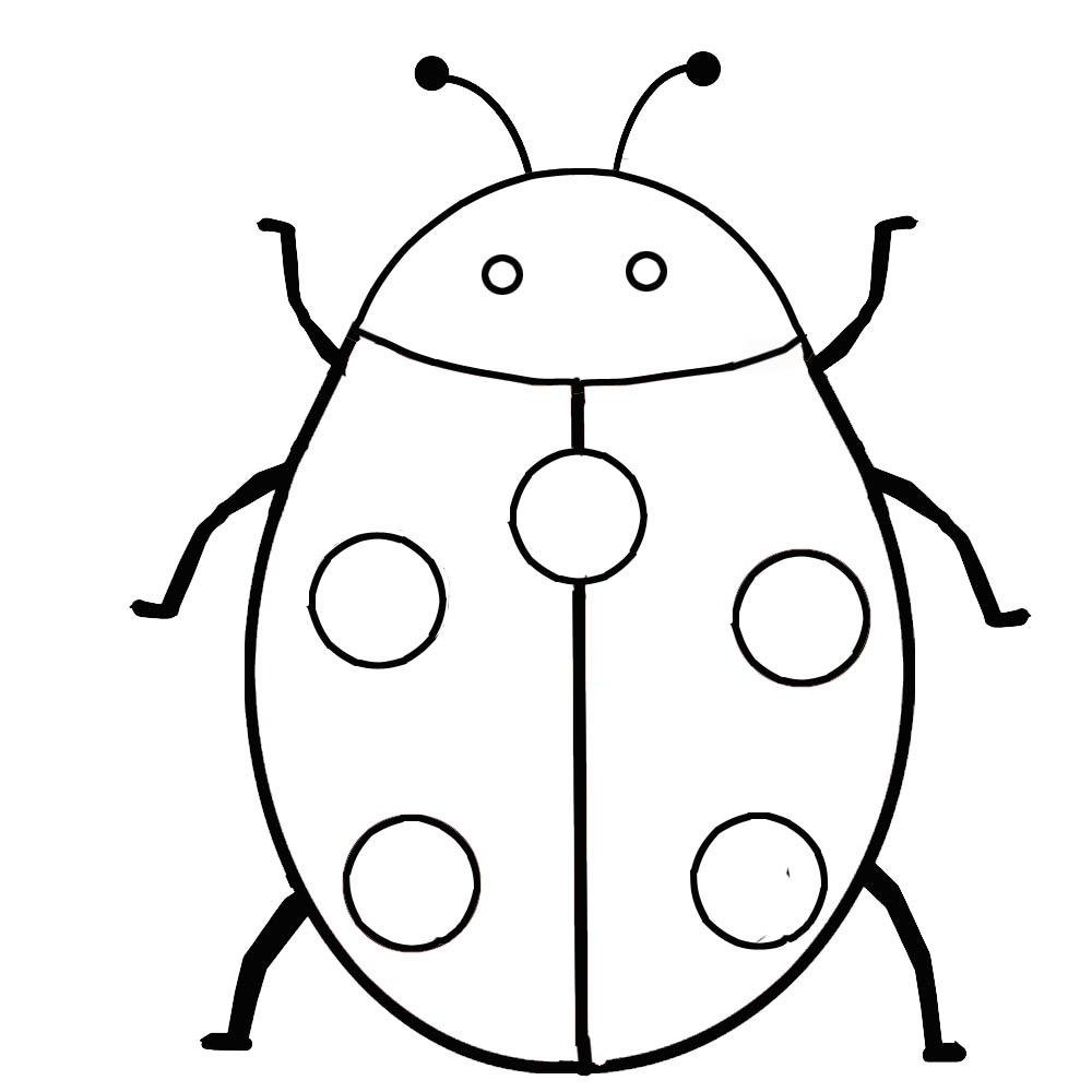 Fresh Bugs Coloring Page 74 On Seasonal Colouring Pages With Bugs