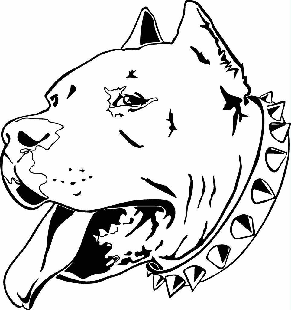Head Pitbull Coloring Page