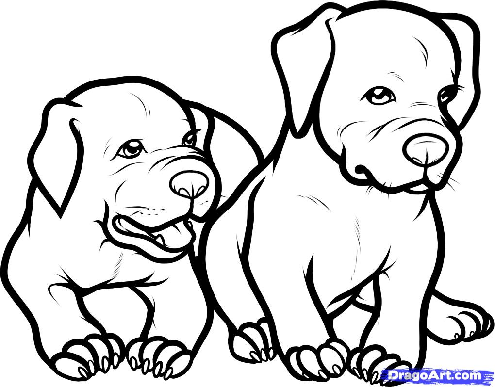 Lovely Pitbull Coloring Pages 25 About Remodel Free Coloring Kids