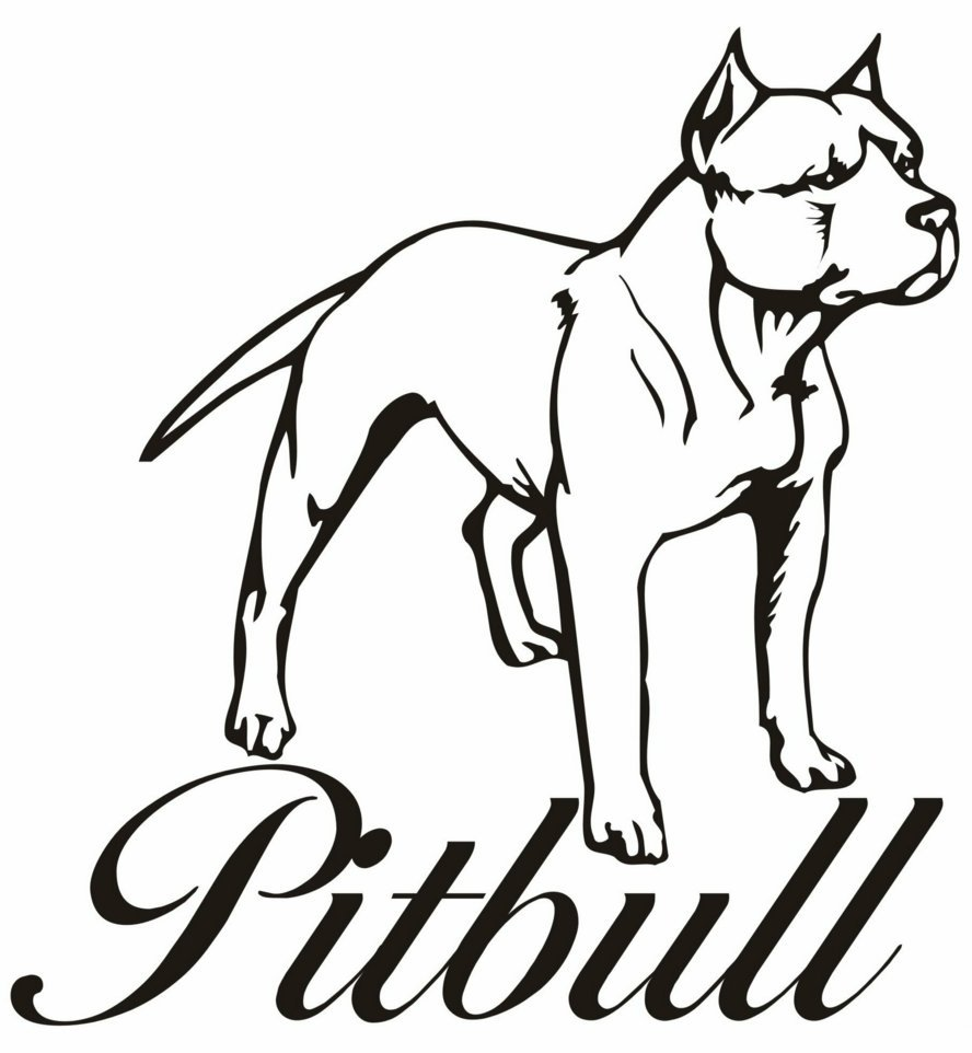 Luxury Pitbull Coloring Pages 14 On Coloring Pages Online With