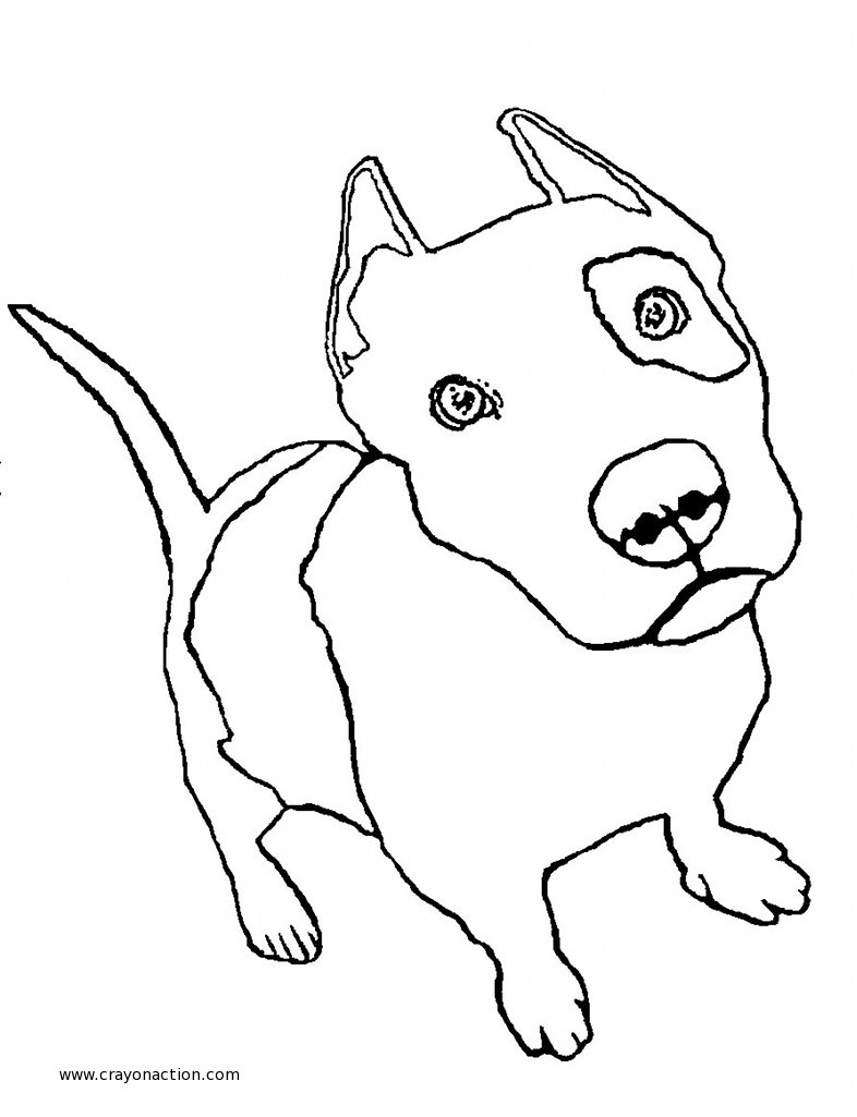 Perfect Pitbull Coloring Pages 15 With Additional Free Coloring