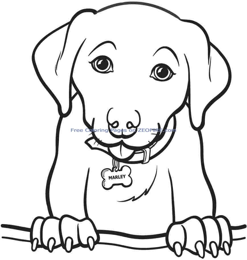 Download Coloring Pages  Printable Animal Coloring Pages