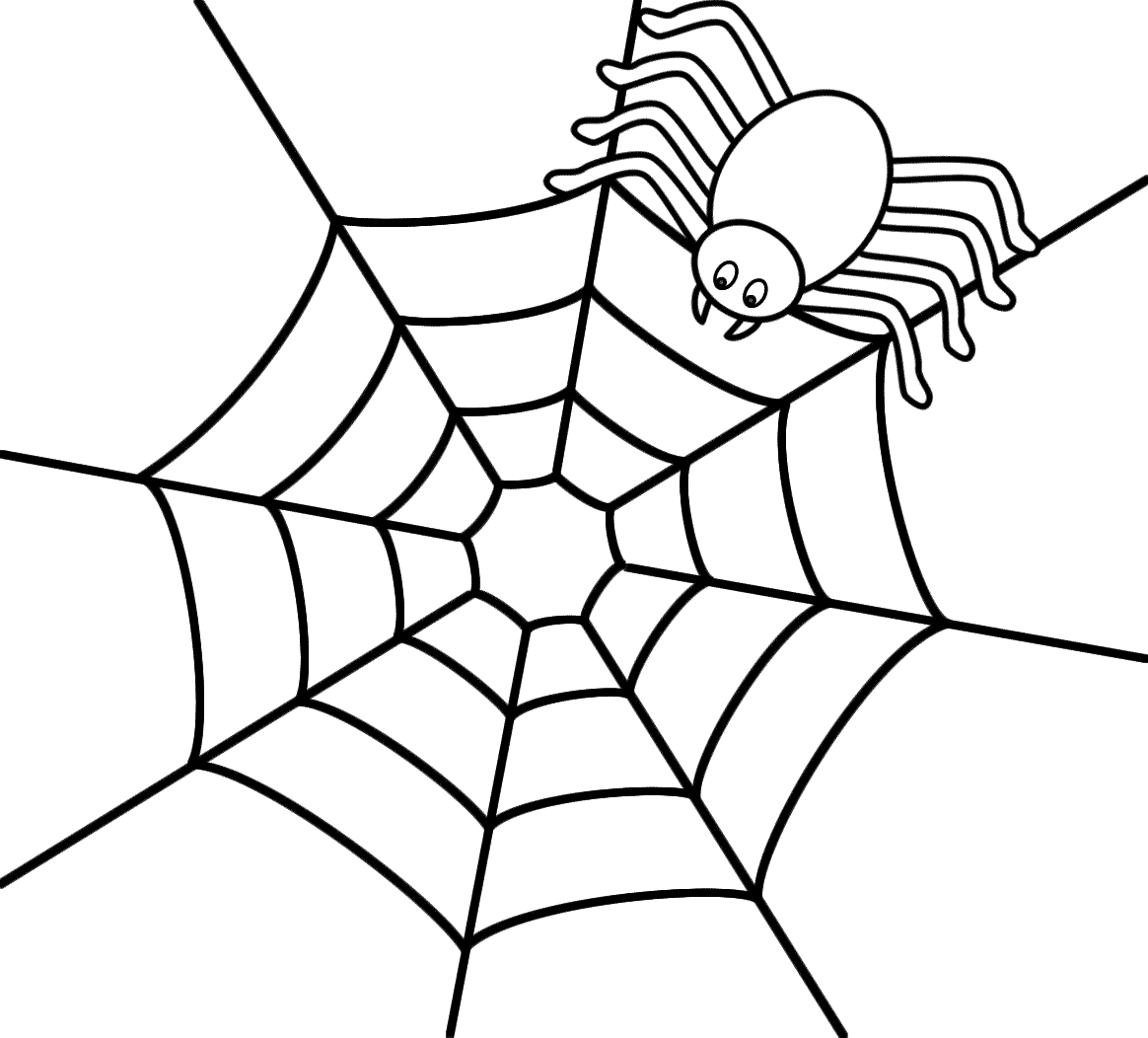 Spider On Top Of A Web