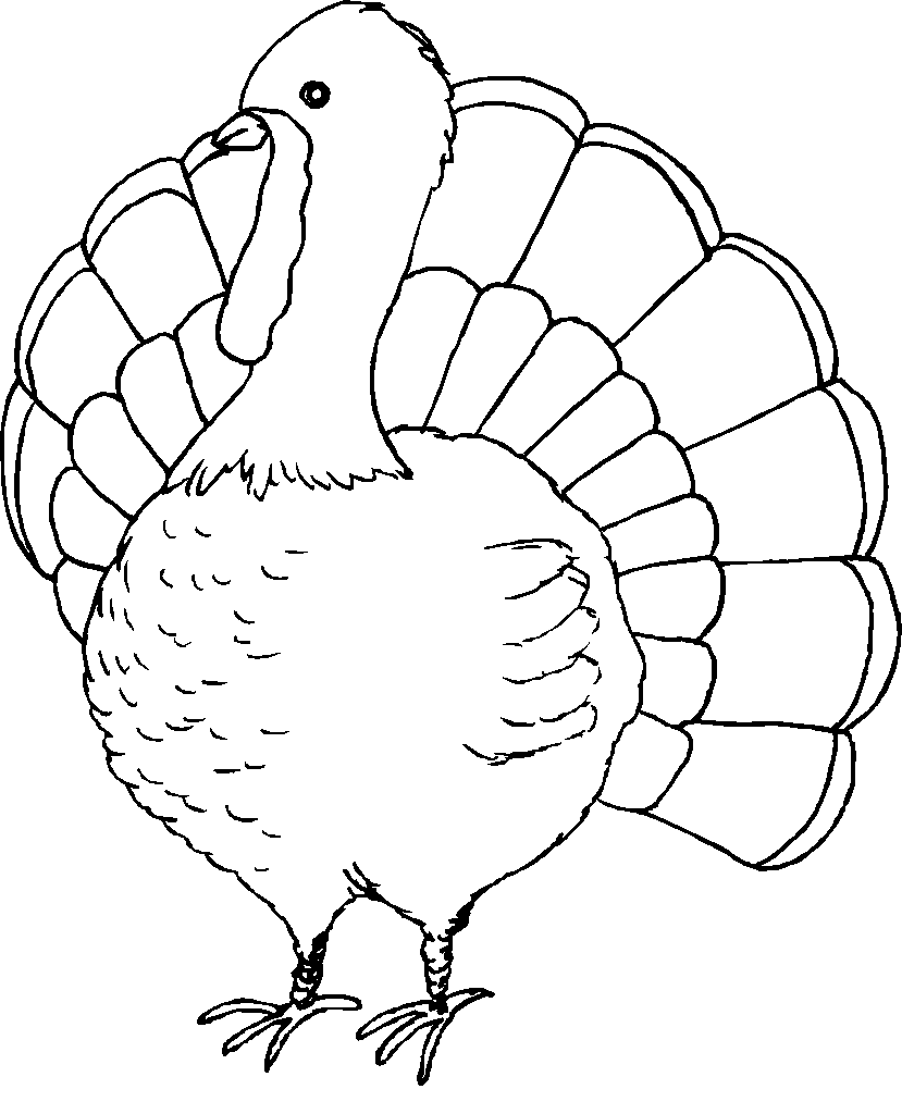 To Print Coloring Pages For Thanksgiving Turkeys 92 With