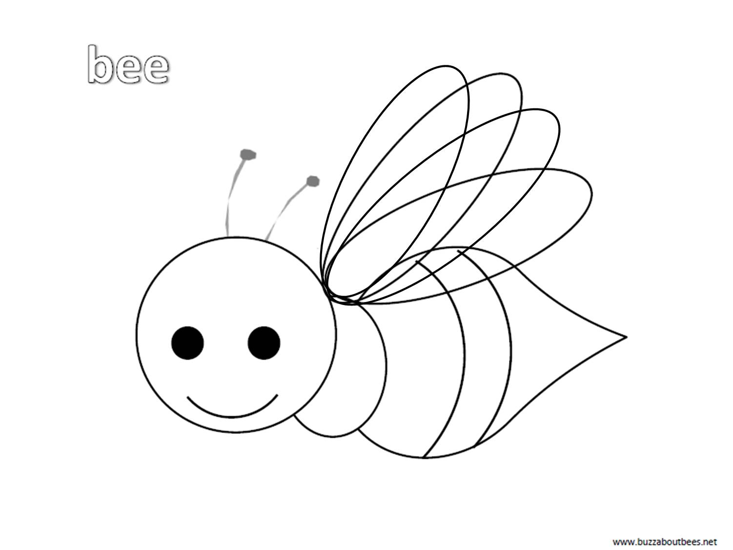 Bee Coloring Pages, Educational Activity Sheets And Puzzles Free