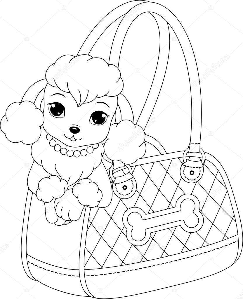 Poodle Coloring Page — Stock Vector © Malyaka  55235845