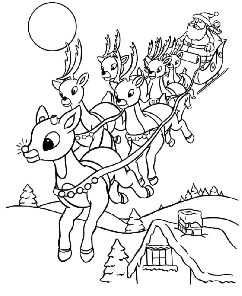 Drawn Reindeer Coloring Book