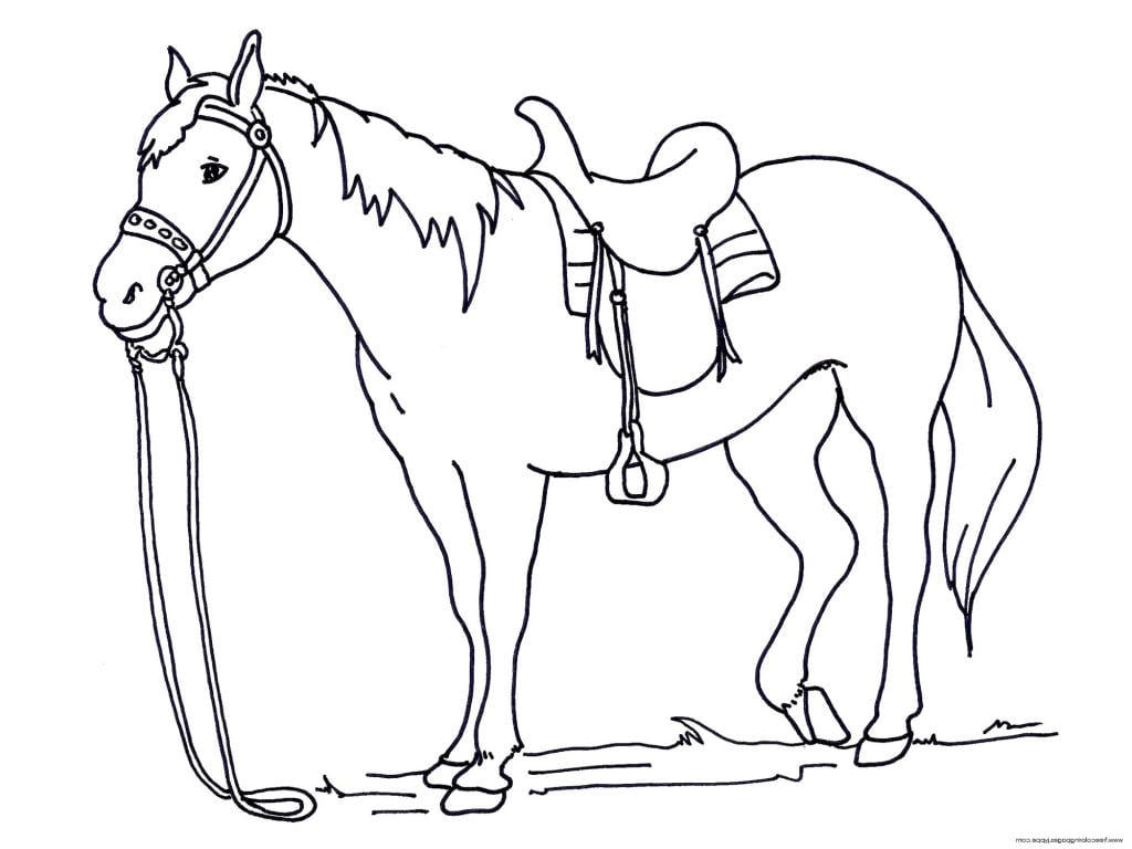34 Coloring Pages For Horses, Running Horse Coloring Page Free