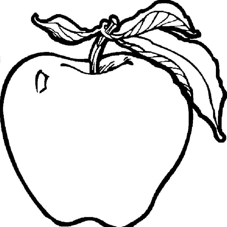 Apple Clipart Coloring Page