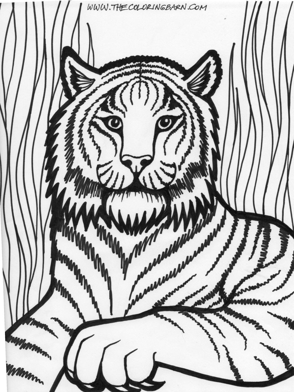 Great Lion Coloring Pages From Lion Coloring Pages For Kids With