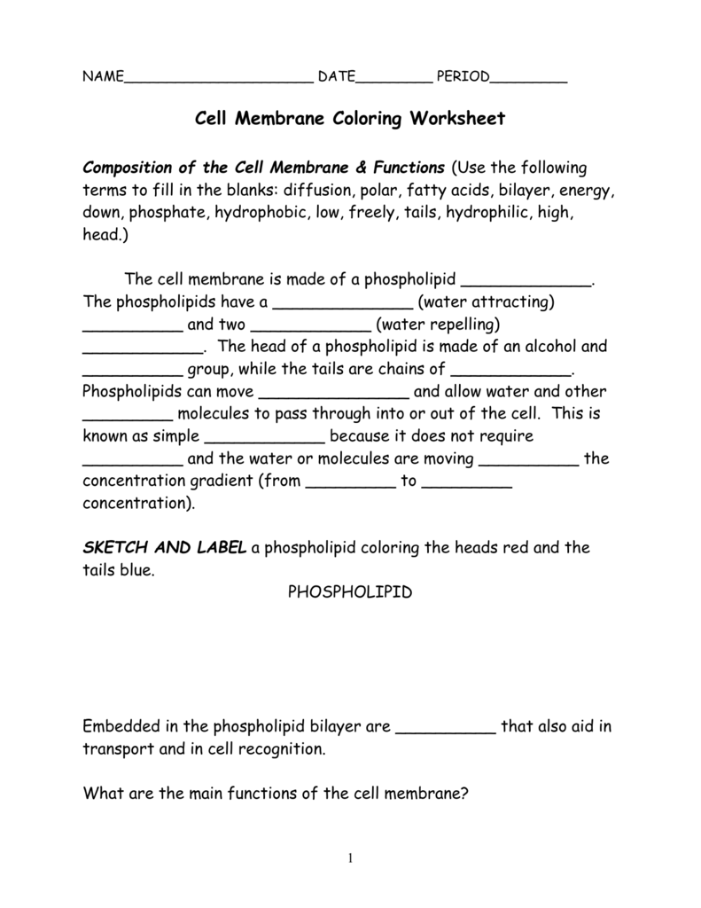 008471222 1 With Cell Membrane Coloring Worksheet