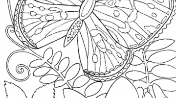 Adult Coloring Pages Free Printable