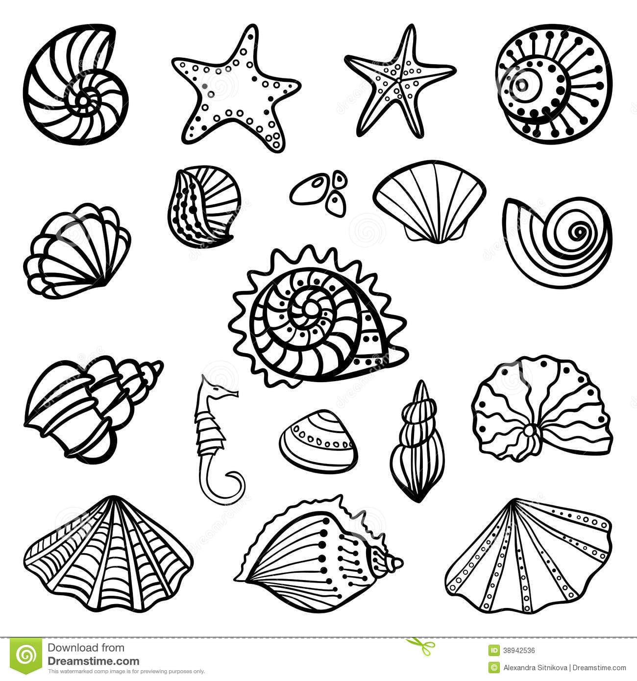 Shell Coloring Pages To Download And Print For Free