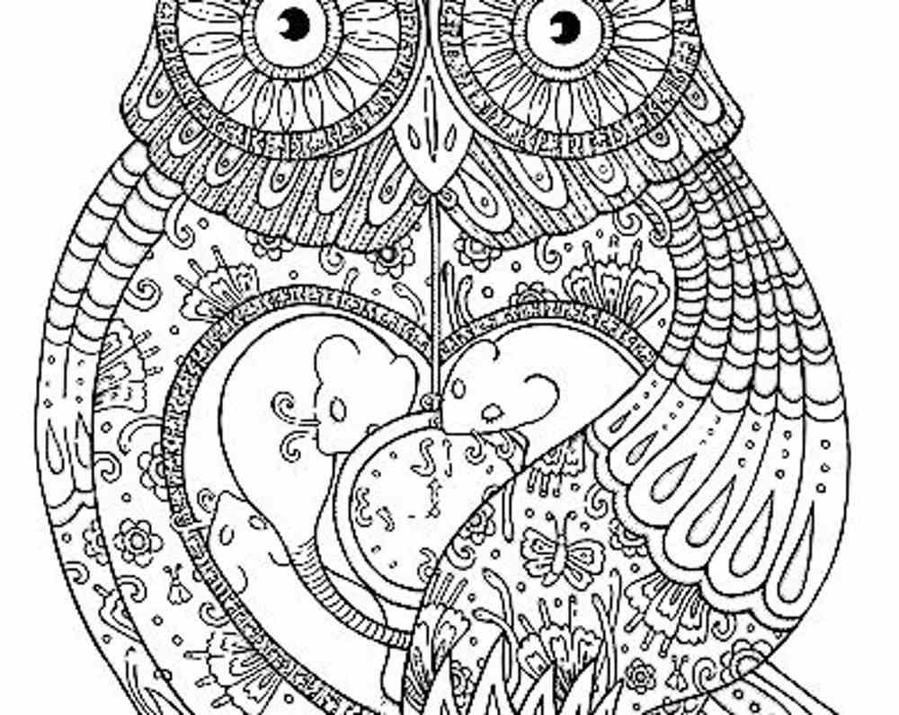 Coloring Pages For Grown Ups Free Printable Adult Big 4870 Unknown