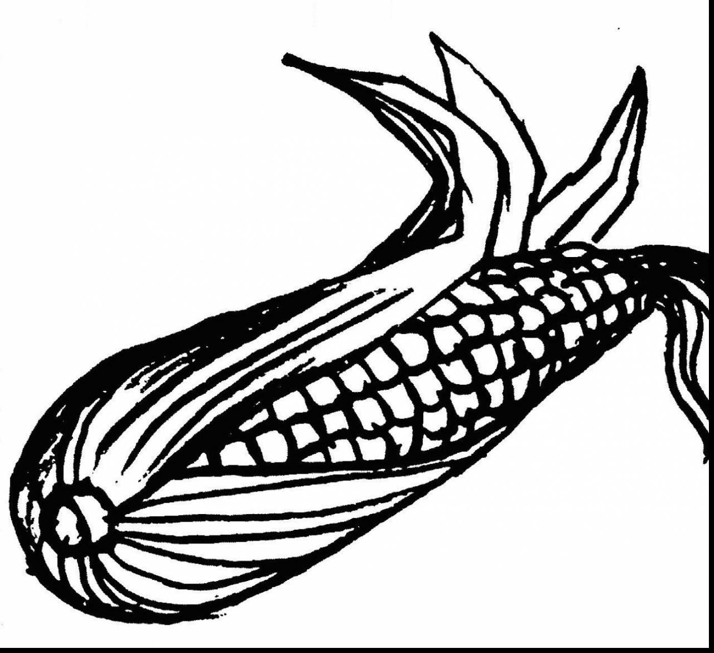 Excellent Impressive Clip Art Ear Of Corn Coloring Page With