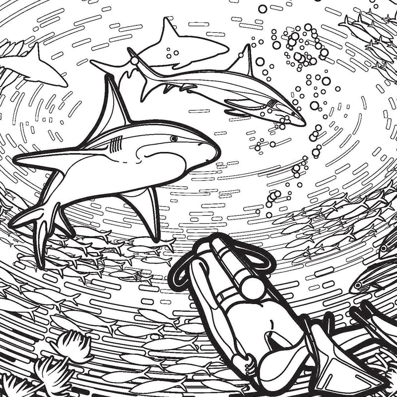Contemporary Ideas Coloring Pages Sharks Special Coloring Pages Of